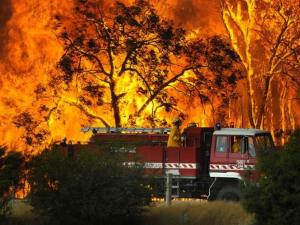 Victoria's $650m bushfire prevention technology could actually sta..