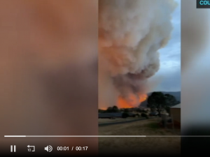Fires in Victoria destroy estimated 300 homes, former police chief to ..